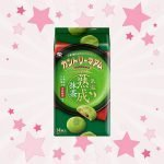 Fujiya-Country-Maam-Matcha-photo00
