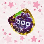 Pack of Mikakuto Cororo Gummy Grape